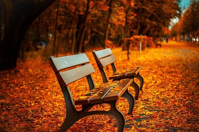 kursi taman panjang besi cor & kayu jati