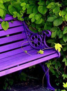 inspirasi warna kursi taman ungu
